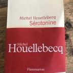 Houellebecq doet het weer